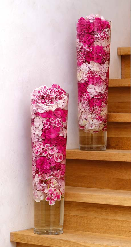 Hydrangeas in tall vase