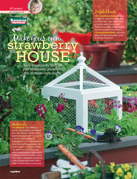 DIY strawberry house