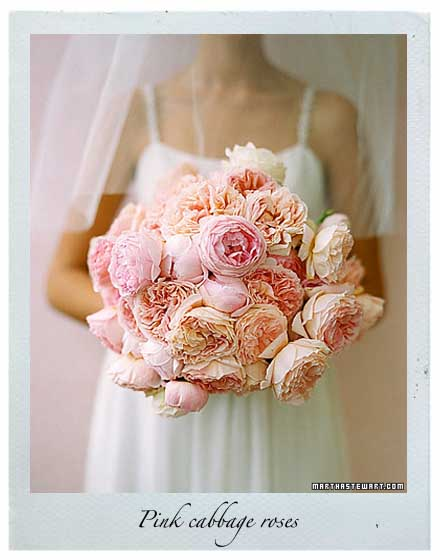 Bridal Bouquets With Cabbage Roses : Q as flaming petal