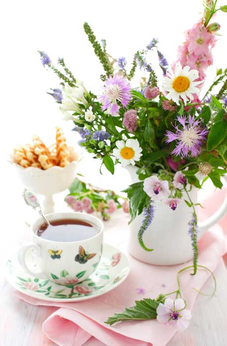 Cup of tea and summer blooms
