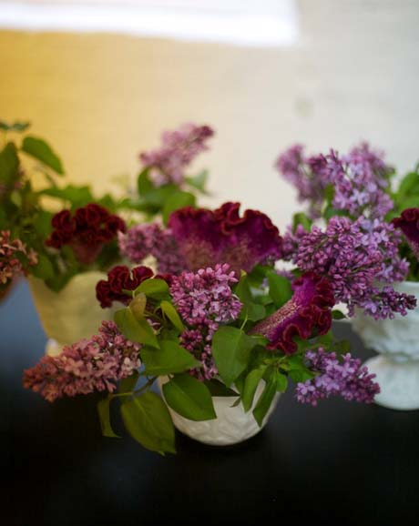 Lilacs and celosia