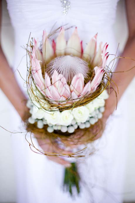 Divine protea in wedding bouquet
