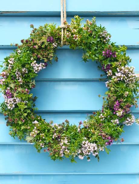Thyme wreath