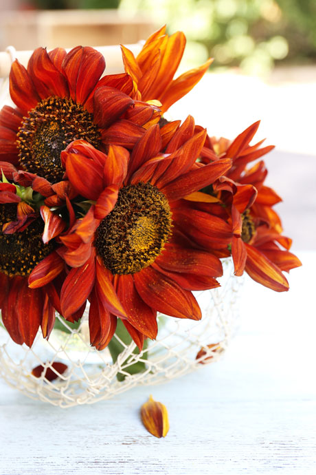 Sunflower-bouquet1