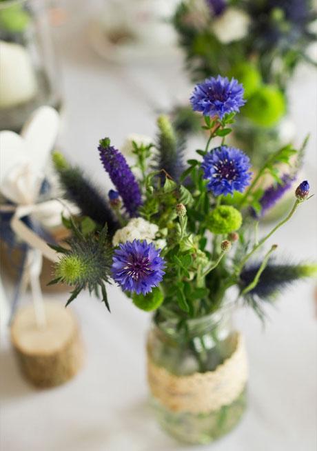 cornflowers-blue3