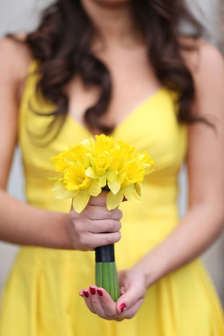 daffodils yellow dress