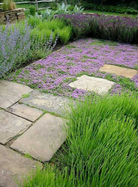 Landscape Stone Ground Cover : Gardening and floral design tips from jane wrigglesworth