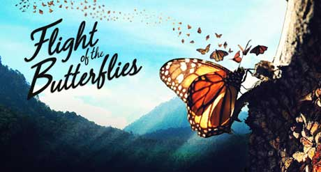 flight-of-the-butterflies-3d